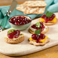 Hot Pepper Cranberry Jelly Appetizer