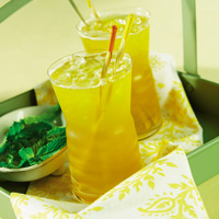 Mint-Green Tea Cooler