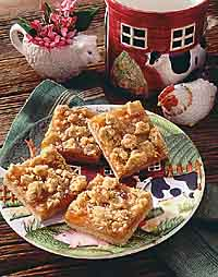 Fruit and Oat Squares