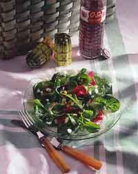 Garden Greens with Fennel Dressing