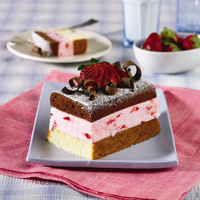 Mini Neapolitan Ice Cream Cakes