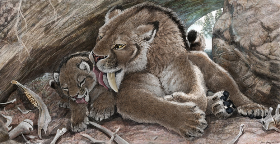 Saber-tooth Kittens Were Big-boned | HowStuffWorks