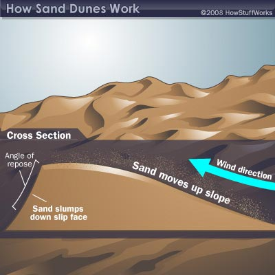 Sand Dune Formation | HowStuffWorks