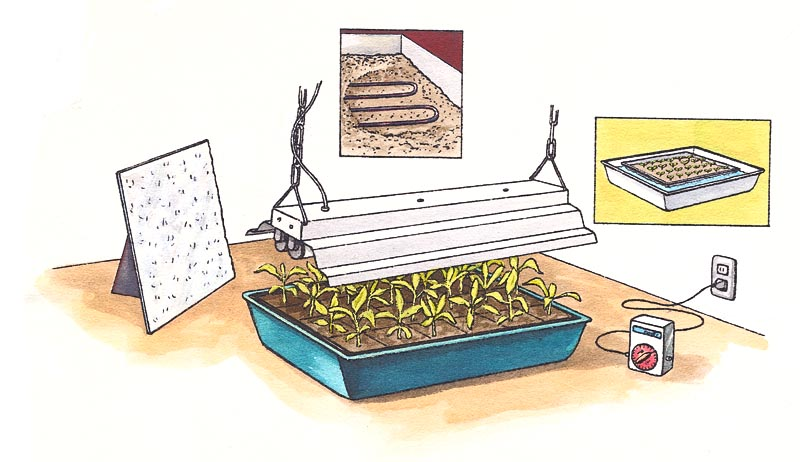 Equipment for starting plants indoors.