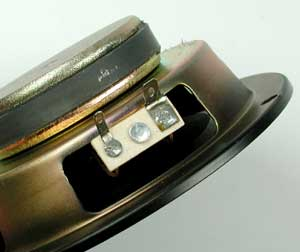 The wire that runs through the speaker system connects to two hook-up jacks on the driver.