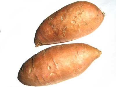 Sweet potatoes look similar to regular potatoes, but they are not closely related.