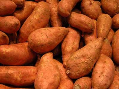 Despite their hardy appearance, bruises or cuts will spoil a sweet potato.