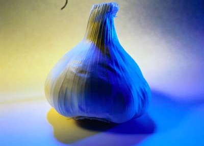 Garlic has held a mystical allure for cultures throughout history.