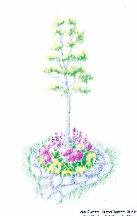 Flowering trees are perfect for small gardens.