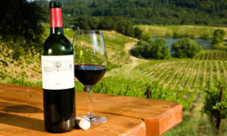 Here are a few of our most popular Napa Valley/Sonoma resorts:
