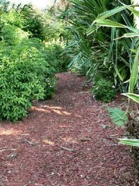 Vegetable Garden Mulches Howstuffworks