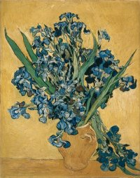 Irises, by Vincent van Gogh, 1890