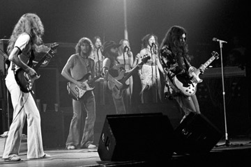 A Murky Story - Why do people yell 'Play 'Freebird'' at concerts ...