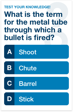 Can You Ace This Bullets and Firearms Quiz in 7 Minutes?